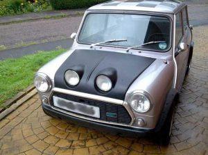 Mini Bonnet Frog eye 2